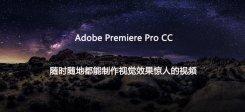Adobe Premiere Pro 2020 v14 直装破解版