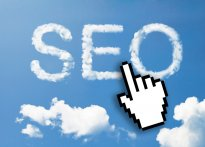 做网站SEO如何缩短新站优化周期