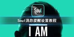 Soul消息提醒看不到怎么办 Soul消息提醒设置教程